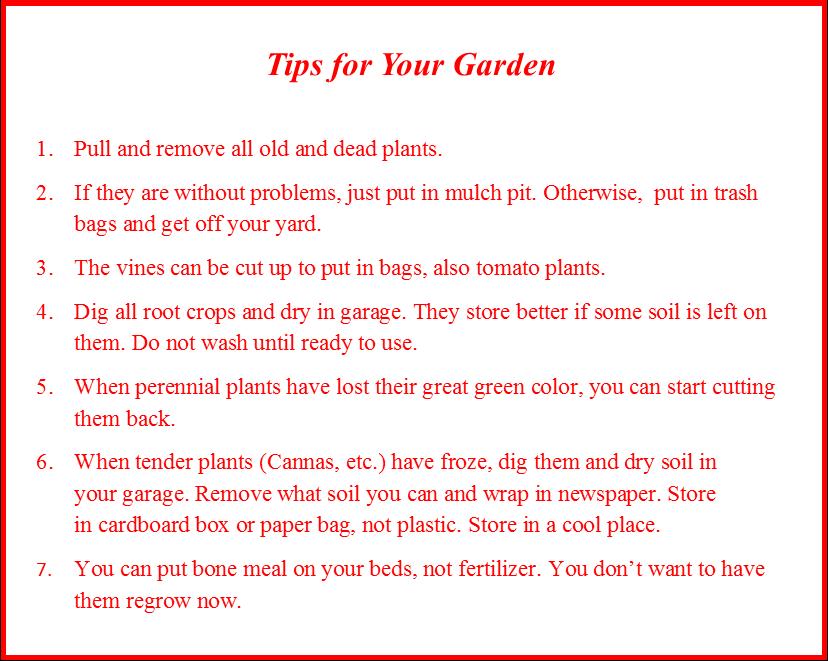 9.26 Tips for Garden